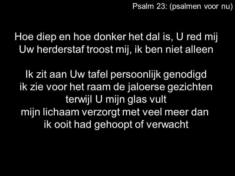 Psalm 23: (psalmen voor nu) Hoe diep en hoe donker het dal is, U red mij Uw herderstaf troost mij, ik ben niet alleen Ik zit aan Uw tafel persoonlijk