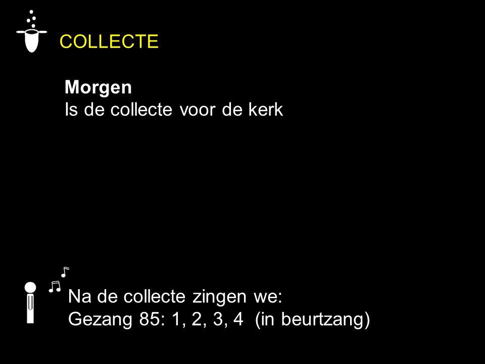 COLLECTE Morgen Is de collecte voor de kerk Na de collecte zingen we: Gezang 85: 1, 2, 3, 4 (in beurtzang)