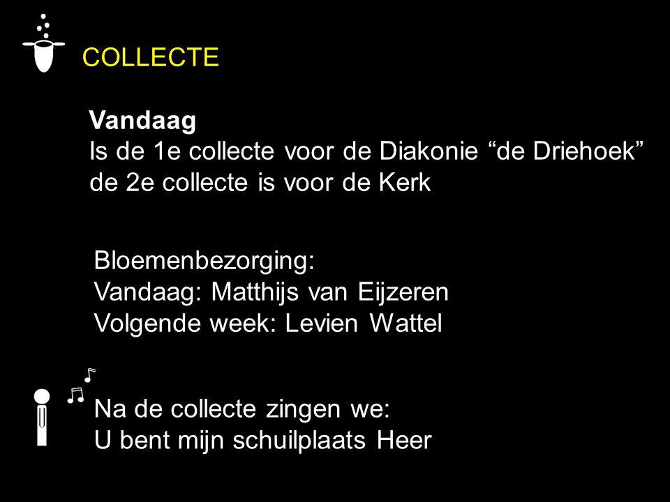 """COLLECTE Vandaag Is de 1e collecte voor de Diakonie """"de Driehoek"""" de 2e collecte is voor de Kerk Na de collecte zingen we: U bent mijn schuilplaats He"""