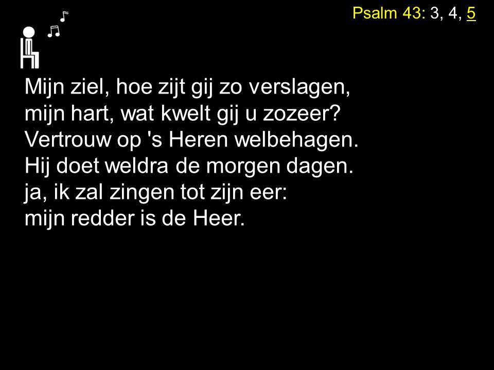Psalm 43: 3, 4, 5 Mijn ziel, hoe zijt gij zo verslagen, mijn hart, wat kwelt gij u zozeer? Vertrouw op 's Heren welbehagen. Hij doet weldra de morgen