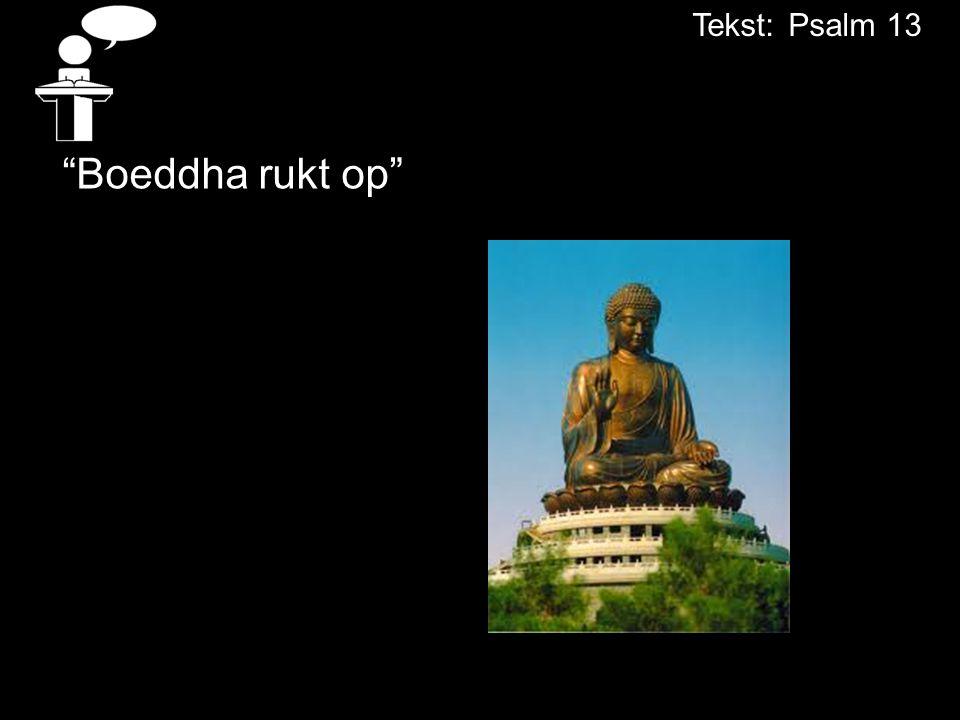"""""""Boeddha rukt op"""" Tekst:Psalm 13"""