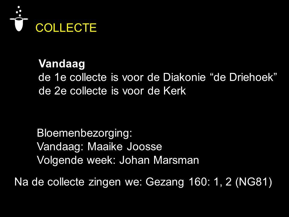 Bloemenbezorging: Vandaag: Maaike Joosse Volgende week: Johan Marsman COLLECTE Vandaag de 1e collecte is voor de Diakonie de Driehoek de 2e collecte is voor de Kerk