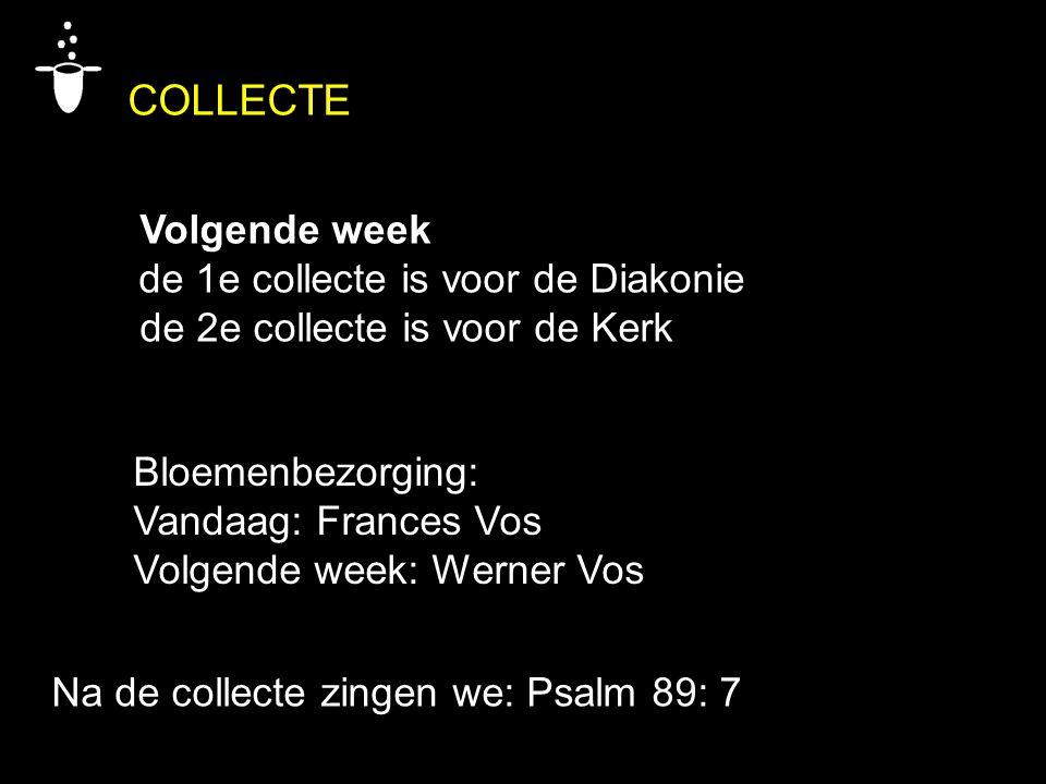 Bloemenbezorging: Vandaag: Frances Vos Volgende week: Werner Vos Na de collecte zingen we: Psalm 89: 7 COLLECTE Volgende week de 1e collecte is voor de Diakonie de 2e collecte is voor de Kerk
