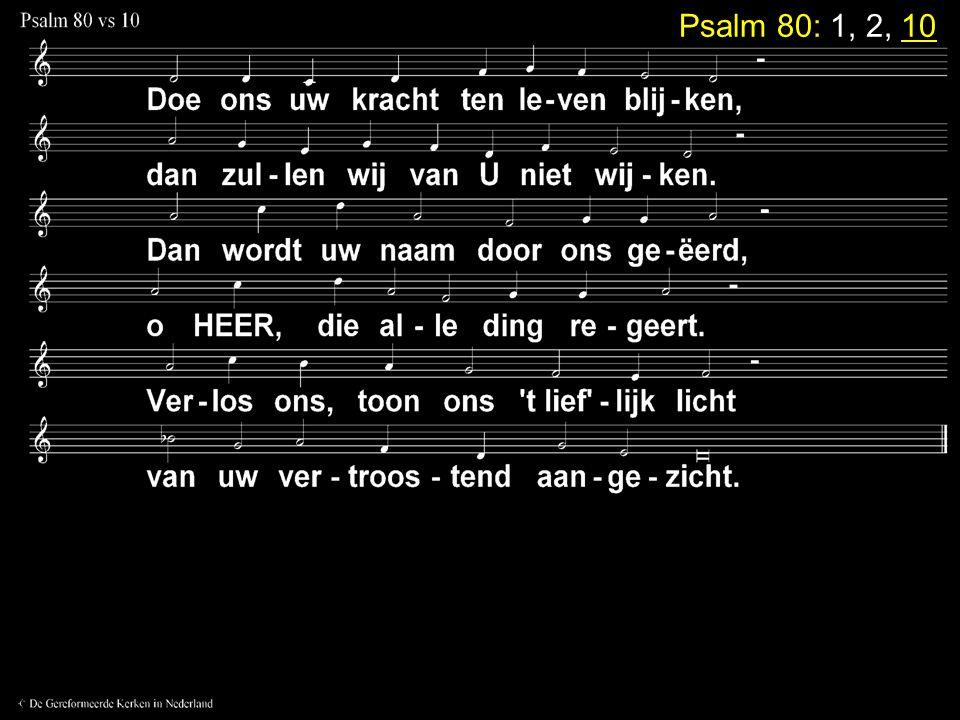 Votum en Zegengroet Zingen:Psalm 80: 1, 2, 10 Gebed Lezen: Jesaja 40: 1 - 11 en 27 - 31 Zingen:Gezang 80: 1, 2, 3, 4 (NG 44) Tekst: Jesaja 40: 1 - 5 Preek Zingen:Psalm 130: 2, 3, 4