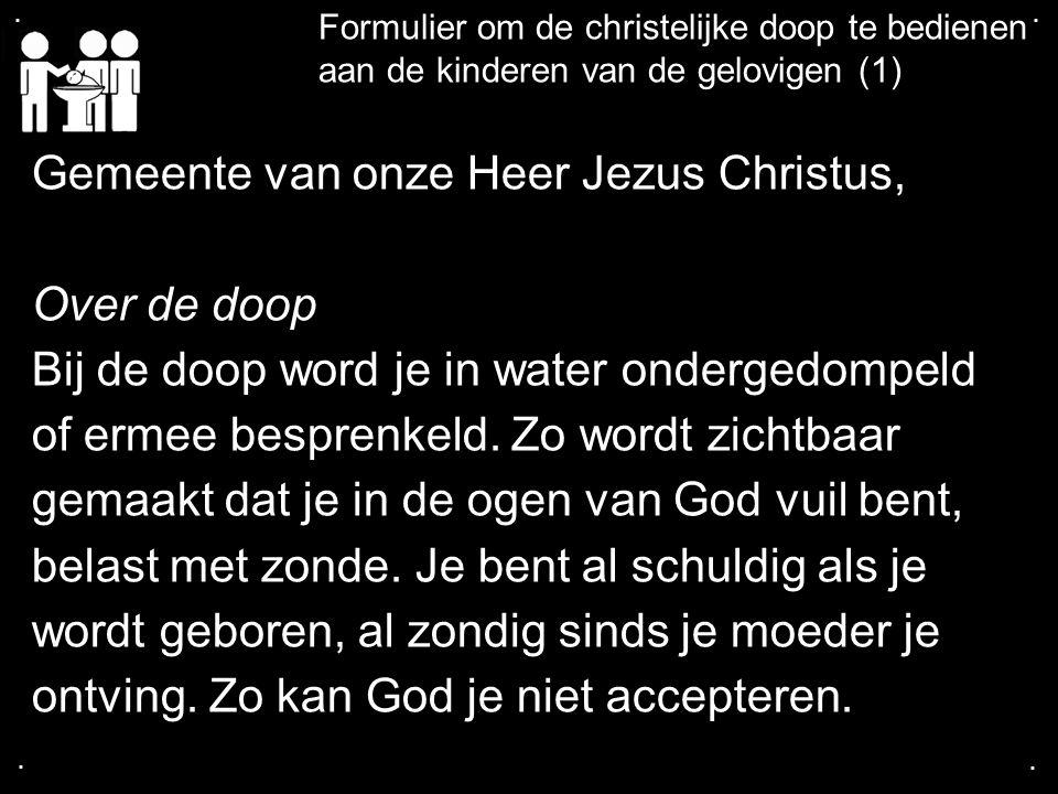 .... Formulier om de christelijke doop te bedienen aan de kinderen van de gelovigen (1) Gemeente van onze Heer Jezus Christus, Over de doop Bij de doo