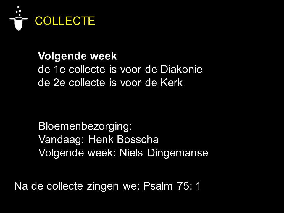 COLLECTE Volgende week de 1e collecte is voor de Diakonie de 2e collecte is voor de Kerk Bloemenbezorging: Vandaag: Henk Bosscha Volgende week: Niels