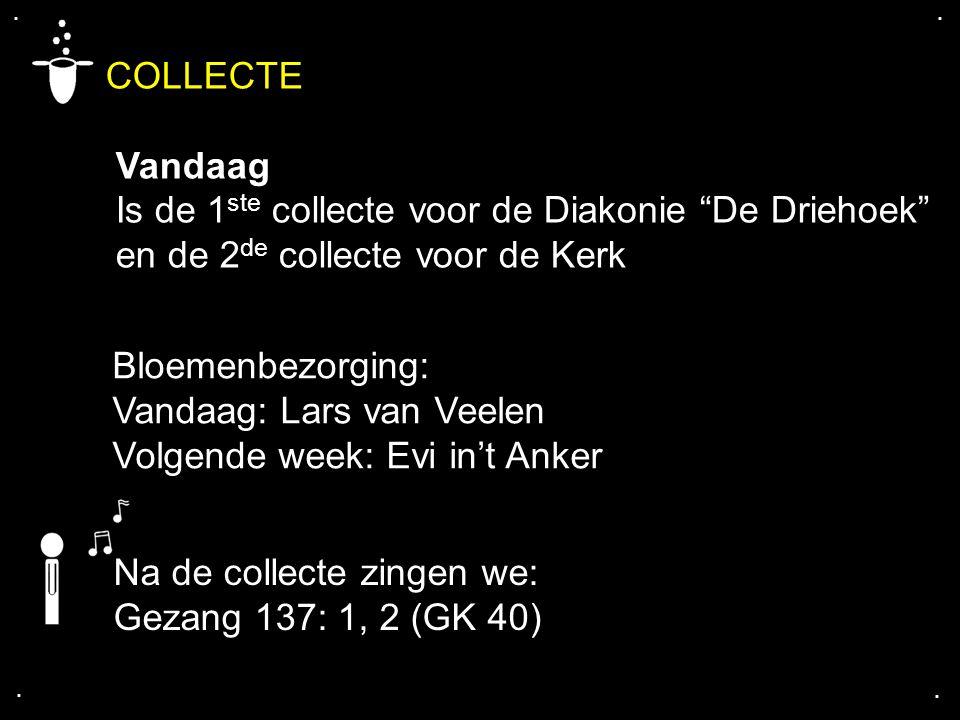 """.... COLLECTE Vandaag Is de 1 ste collecte voor de Diakonie """"De Driehoek"""" en de 2 de collecte voor de Kerk Bloemenbezorging: Vandaag: Lars van Veelen"""