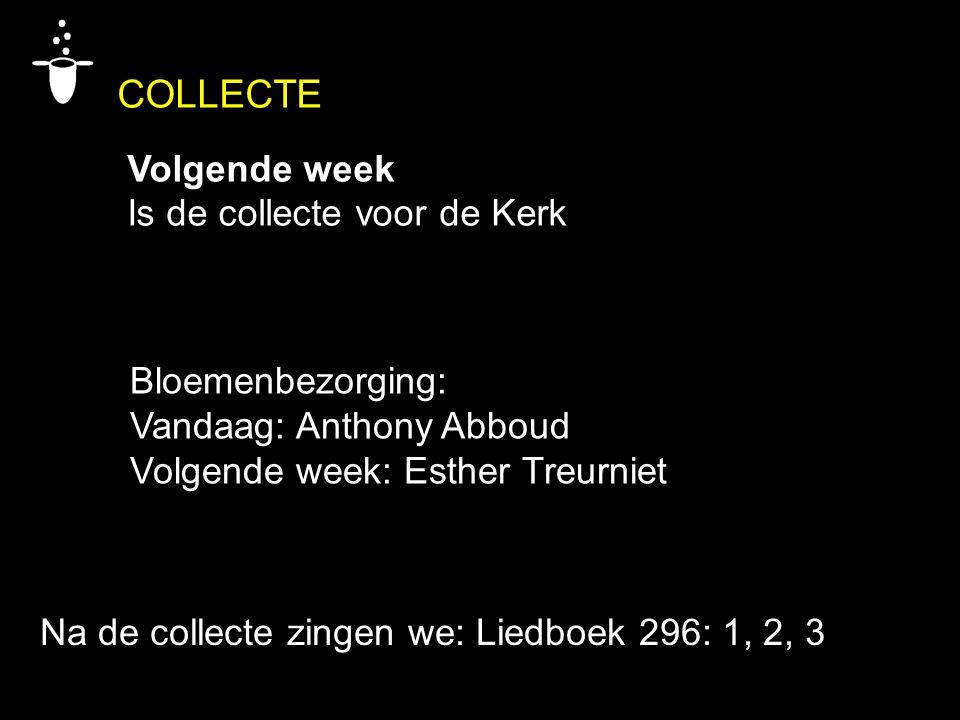 COLLECTE Volgende week Is de collecte voor de Kerk Bloemenbezorging: Vandaag: Anthony Abboud Volgende week: Esther Treurniet