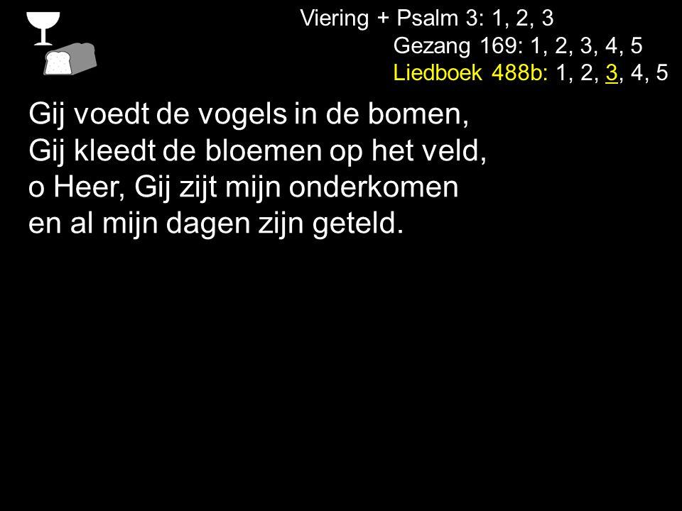 Viering + Psalm 3: 1, 2, 3 Gezang 169: 1, 2, 3, 4, 5 Liedboek 488b: 1, 2, 3, 4, 5 Gij voedt de vogels in de bomen, Gij kleedt de bloemen op het veld,