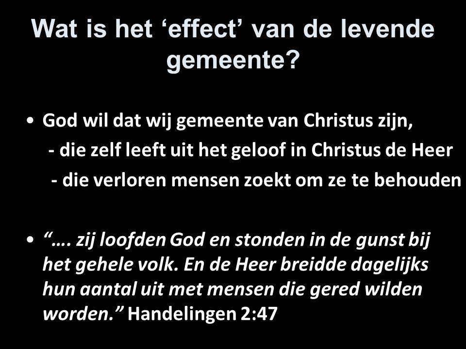 Wat is het 'effect' van de levende gemeente? God wil dat wij gemeente van Christus zijn, - die zelf leeft uit het geloof in Christus de Heer - die ver