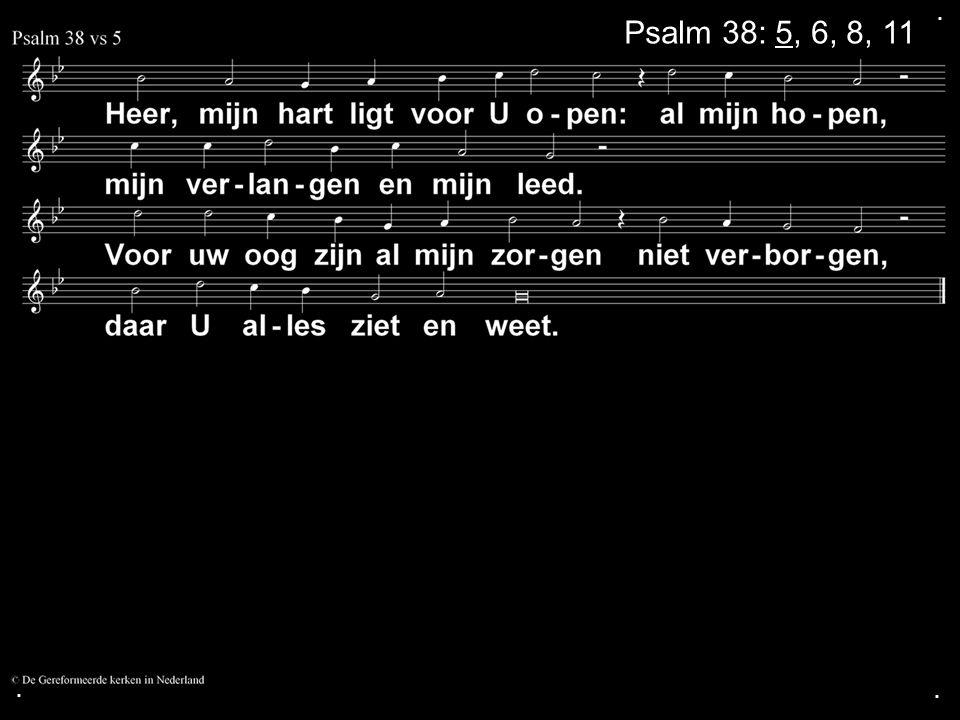 ... Psalm 38: 5, 6, 8, 11