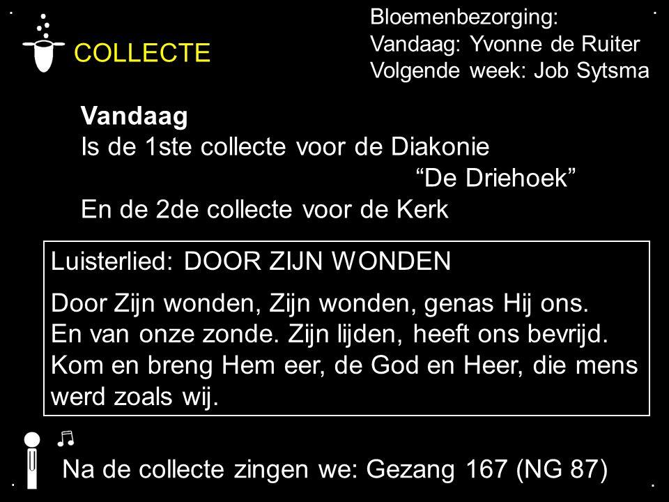 """.... COLLECTE Vandaag Is de 1ste collecte voor de Diakonie """"De Driehoek"""" En de 2de collecte voor de Kerk Bloemenbezorging: Vandaag: Yvonne de Ruiter V"""