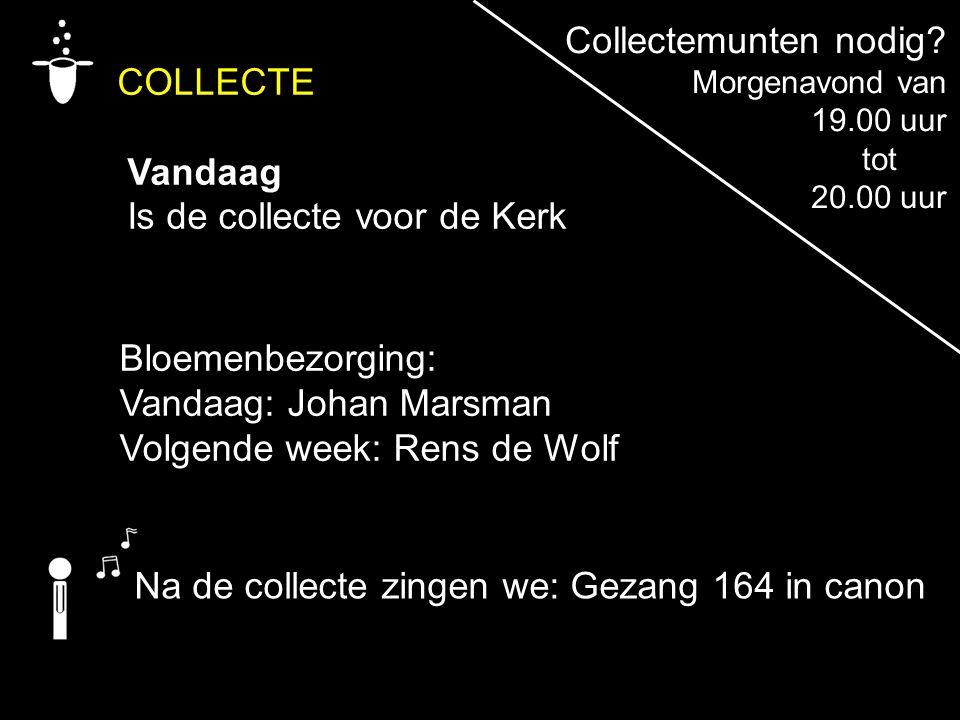 COLLECTE Vandaag Is de collecte voor de Kerk Na de collecte zingen we: Gezang 164 in canon Bloemenbezorging: Vandaag: Johan Marsman Volgende week: Ren