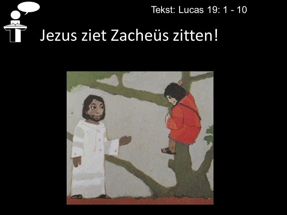 Tekst: Lucas 19: 1 - 10 Jezus ziet Zacheüs zitten!