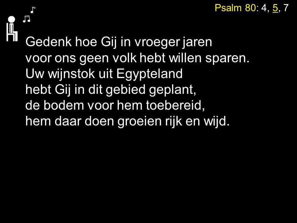 Psalm 80: 4, 5, 7 Gedenk hoe Gij in vroeger jaren voor ons geen volk hebt willen sparen. Uw wijnstok uit Egypteland hebt Gij in dit gebied geplant, de