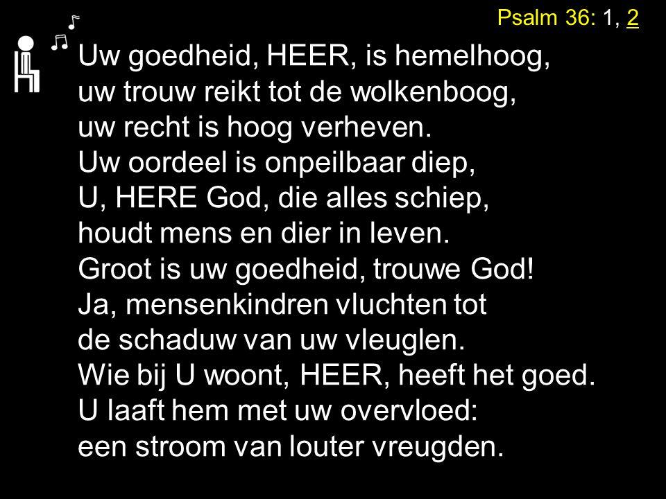 Psalm 36: 1, 2 Uw goedheid, HEER, is hemelhoog, uw trouw reikt tot de wolkenboog, uw recht is hoog verheven. Uw oordeel is onpeilbaar diep, U, HERE Go