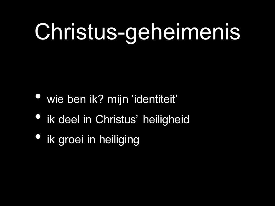 Christus-geheimenis wie ben ik? mijn 'identiteit' ik deel in Christus' heiligheid ik groei in heiliging