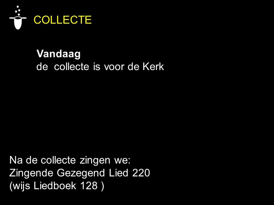 COLLECTE Vandaag de collecte is voor de Kerk Na de collecte zingen we: Zingende Gezegend Lied 220 (wijs Liedboek 128 )