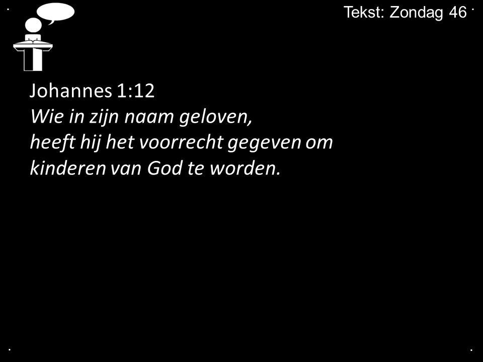 .... Tekst: Zondag 46 Johannes 1:12 Wie in zijn naam geloven, heeft hij het voorrecht gegeven om kinderen van God te worden.