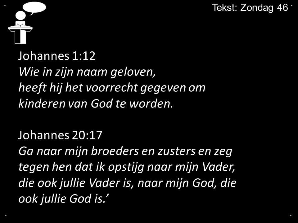 .... Tekst: Zondag 46 Johannes 1:12 Wie in zijn naam geloven, heeft hij het voorrecht gegeven om kinderen van God te worden. Johannes 20:17 Ga naar mi