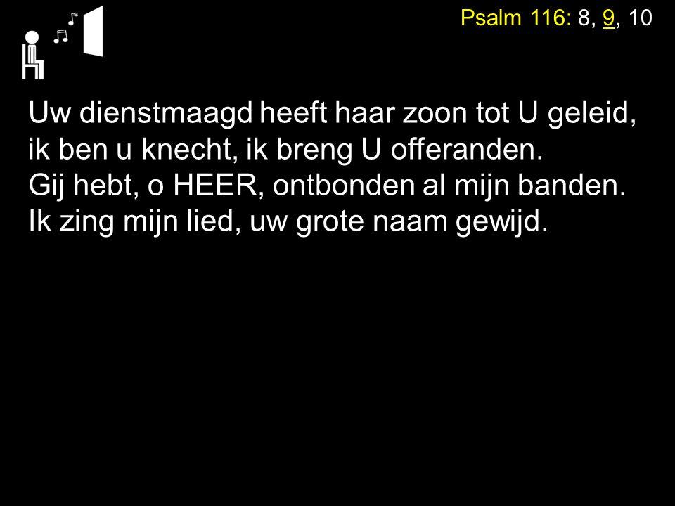 Tekst: Psalm 117 Zingen: Gezang 147: 1, 3, 4 (NG76) Beethoven Ode an die Freude Alle Menschen werden Brüder
