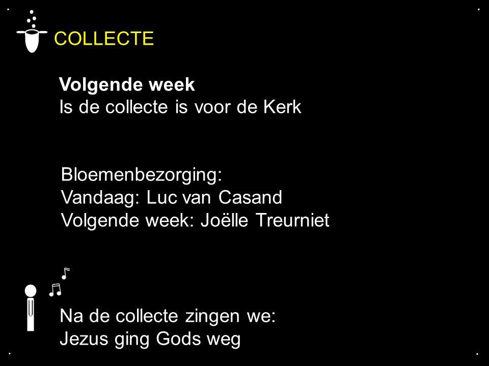 .... COLLECTE Volgende week Is de collecte is voor de Kerk Bloemenbezorging: Vandaag: Luc van Casand Volgende week: Joëlle Treurniet Na de collecte zi