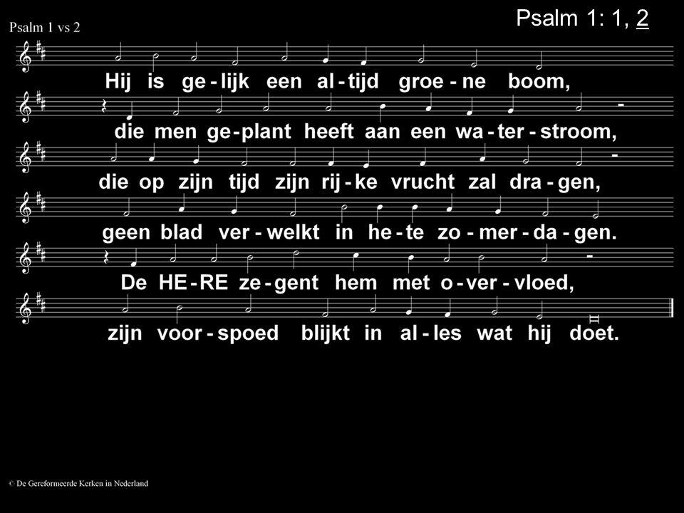 Votum (175b) Zegengroet De zegengroet mogen we beantwoorden met het gezongen amen Zingen: Psalm 99: 6, 7, 8....