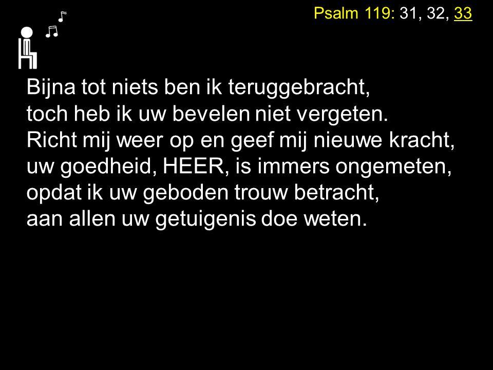 Psalm 119: 31, 32, 33 Bijna tot niets ben ik teruggebracht, toch heb ik uw bevelen niet vergeten. Richt mij weer op en geef mij nieuwe kracht, uw goed