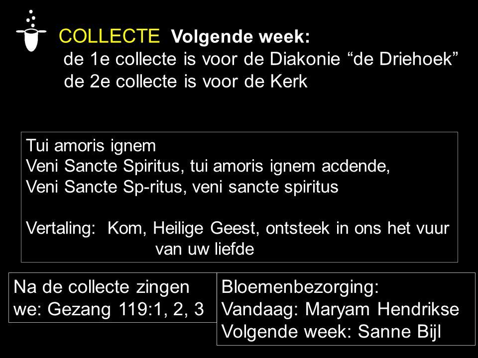 """COLLECTE Volgende week: de 1e collecte is voor de Diakonie """"de Driehoek"""" de 2e collecte is voor de Kerk Na de collecte zingen we: Gezang 119:1, 2, 3 B"""