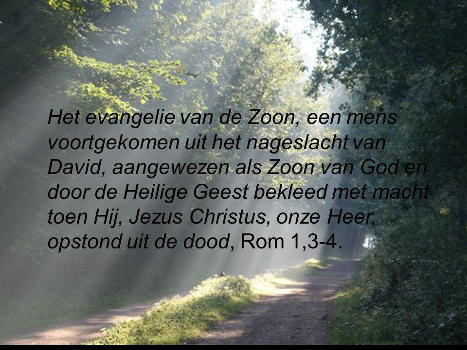 Het evangelie van de Zoon, een mens voortgekomen uit het nageslacht van David, aangewezen als Zoon van God en door de Heilige Geest bekleed met macht