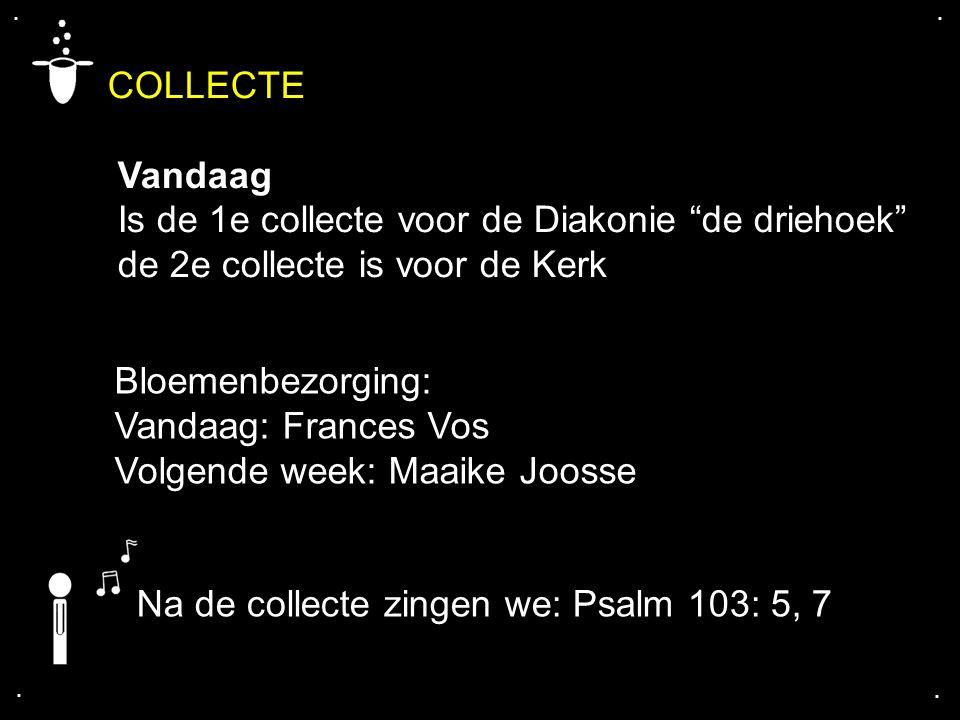 """COLLECTE Vandaag Is de 1e collecte voor de Diakonie """"de driehoek"""" de 2e collecte is voor de Kerk.... Na de collecte zingen we: Psalm 103: 5, 7 Bloemen"""
