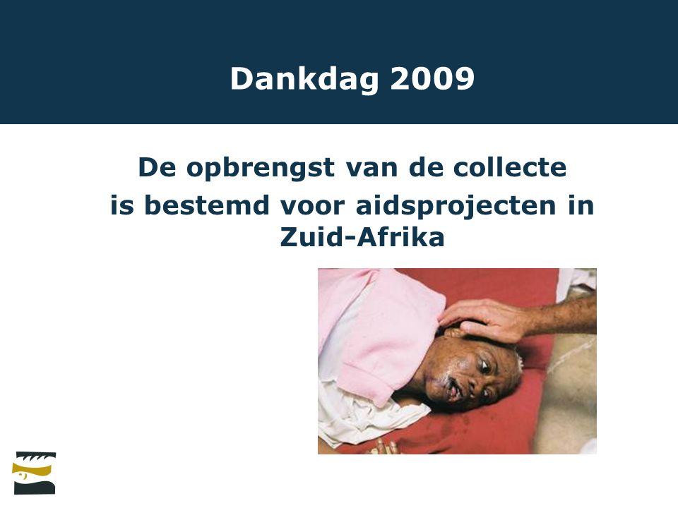 Dankdag 2009 De opbrengst van de collecte is bestemd voor aidsprojecten in Zuid-Afrika