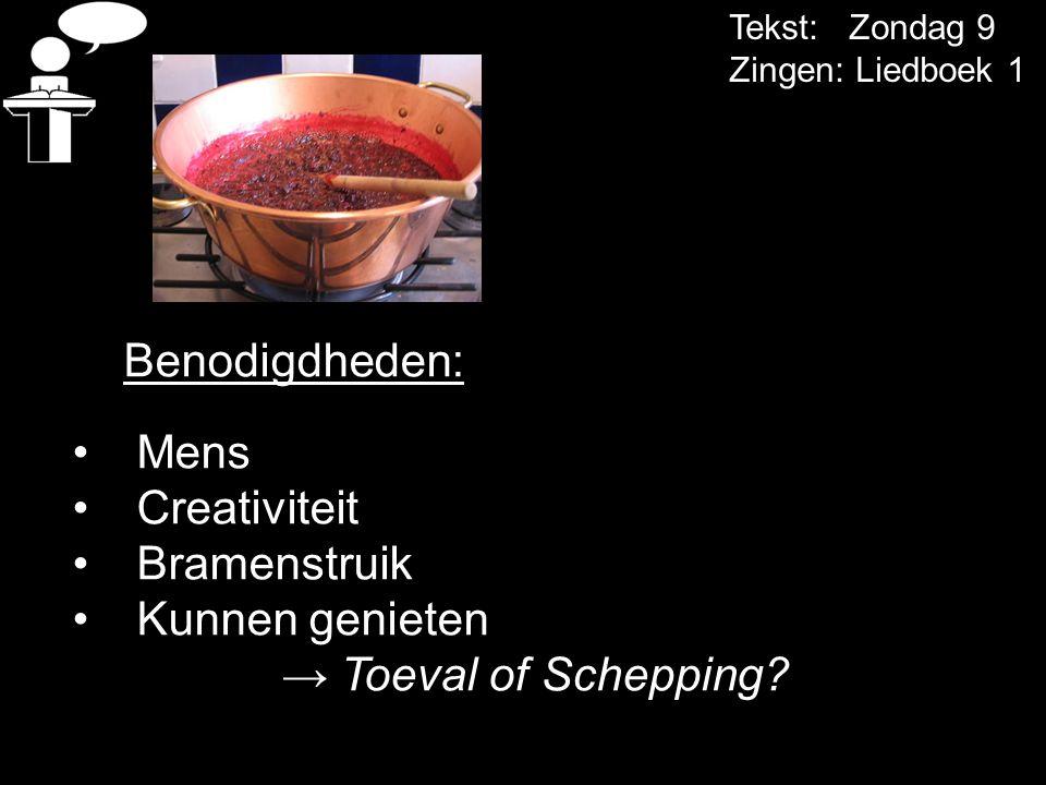 Tekst: Zondag 9 Zingen: Liedboek 1 Benodigdheden: Mens Creativiteit Bramenstruik Kunnen genieten → Toeval of Schepping?