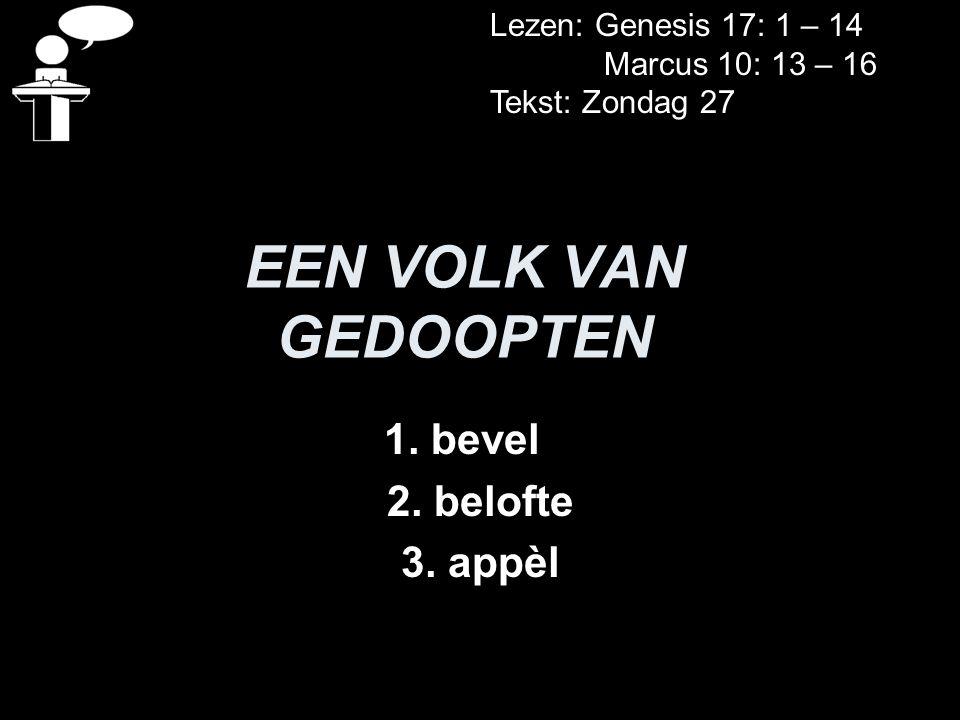 EEN VOLK VAN GEDOOPTEN 1.bevel 2. belofte 3.