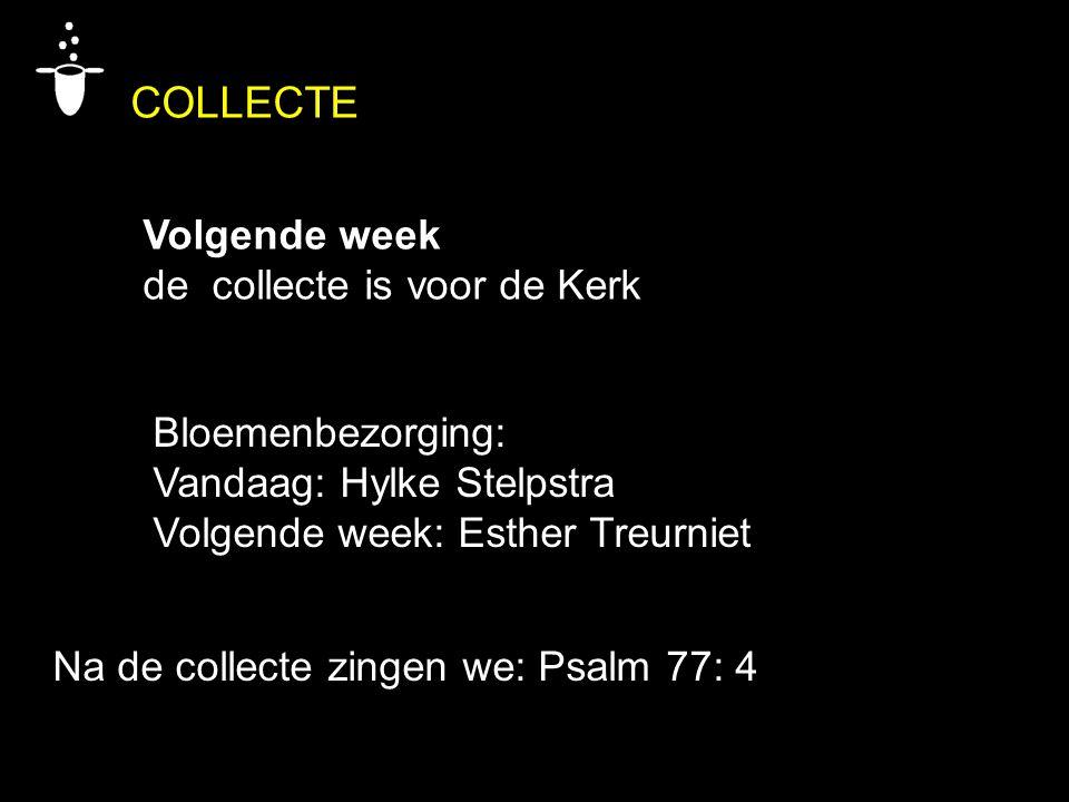 COLLECTE Volgende week de collecte is voor de Kerk Bloemenbezorging: Vandaag: Hylke Stelpstra Volgende week: Esther Treurniet