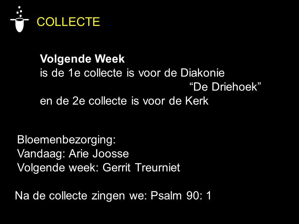 """Bloemenbezorging: Vandaag: Arie Joosse Volgende week: Gerrit Treurniet COLLECTE Volgende Week is de 1e collecte is voor de Diakonie """"De Driehoek"""" en d"""