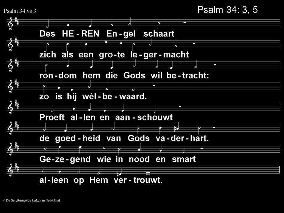 Psalm 34: 3, 5