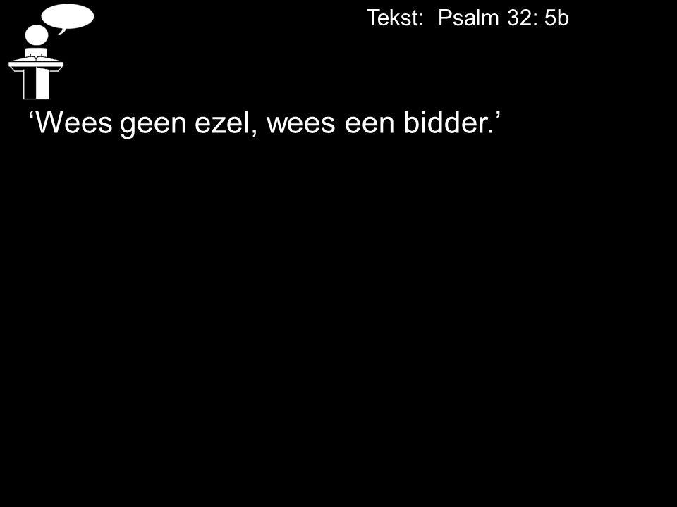 Tekst: Psalm 32: 5b 'Wees geen ezel, wees een bidder.'