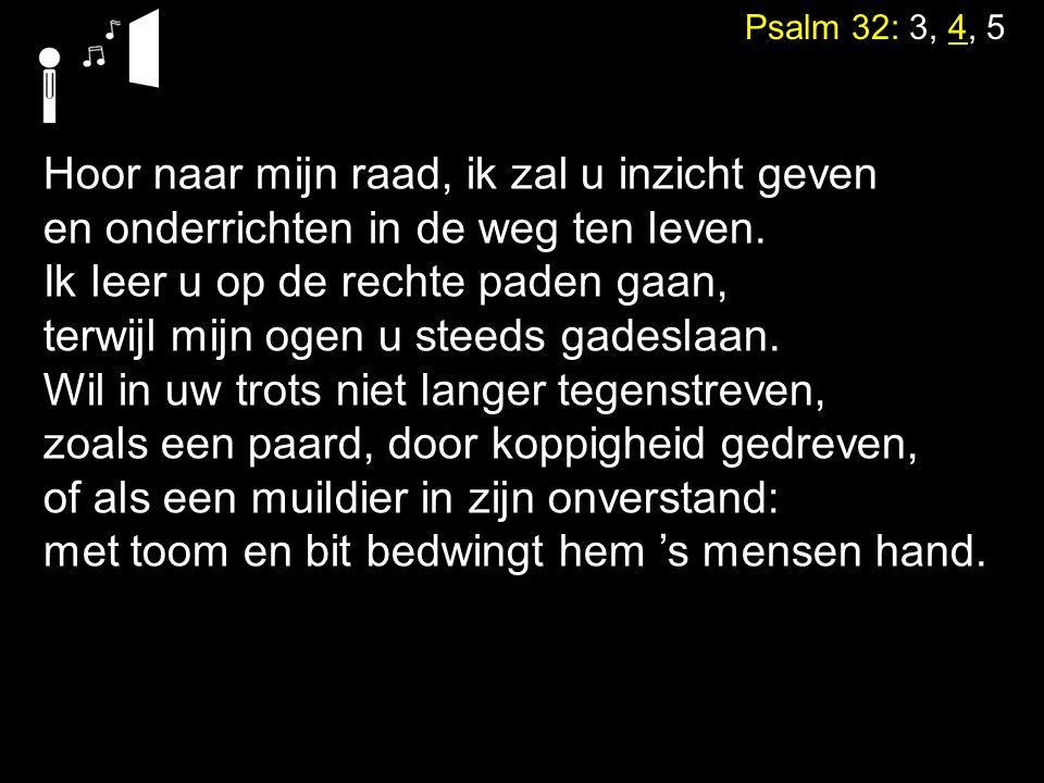 Psalm 32: 3, 4, 5 Hoor naar mijn raad, ik zal u inzicht geven en onderrichten in de weg ten leven. Ik leer u op de rechte paden gaan, terwijl mijn oge