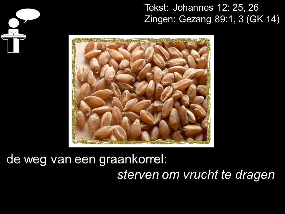 Tekst: Johannes 12: 25, 26 Zingen: Gezang 89:1, 3 (GK 14) de weg van een graankorrel: sterven om vrucht te dragen