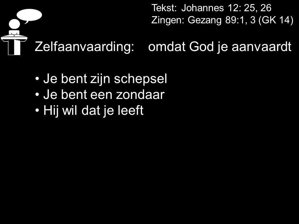Tekst: Johannes 12: 25, 26 Zingen: Gezang 89:1, 3 (GK 14) Zelfaanvaarding: omdat God je aanvaardt Je bent zijn schepsel Je bent een zondaar Hij wil da