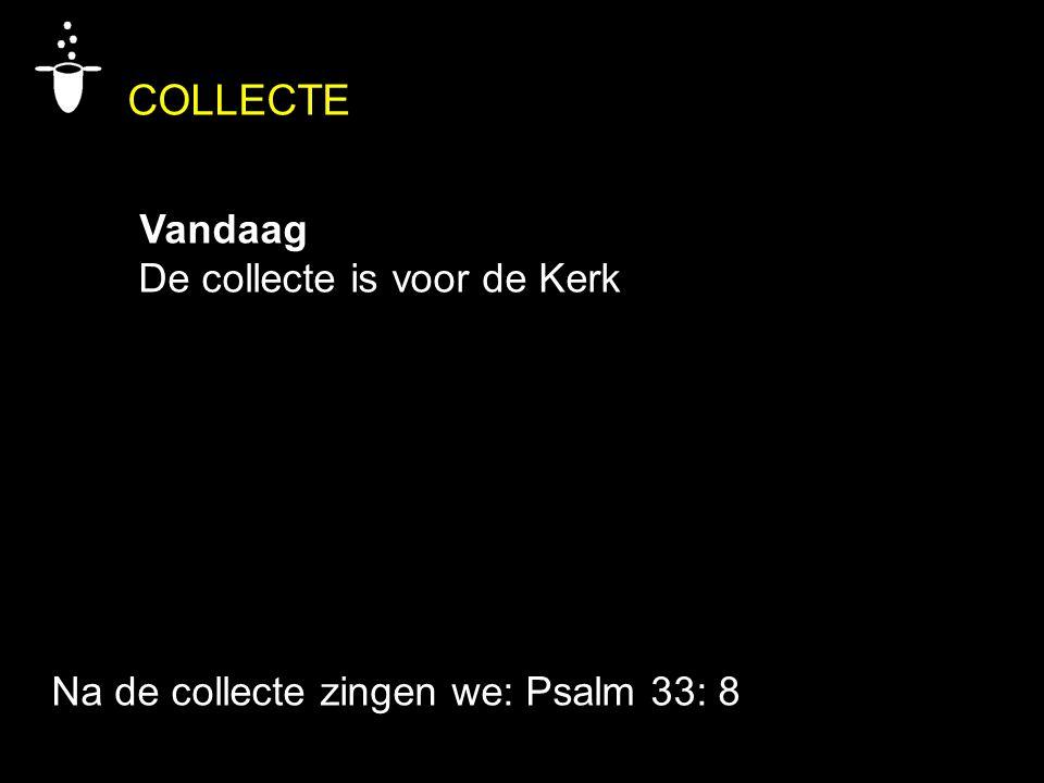 COLLECTE Vandaag De collecte is voor de Kerk Na de collecte zingen we: Psalm 33: 8