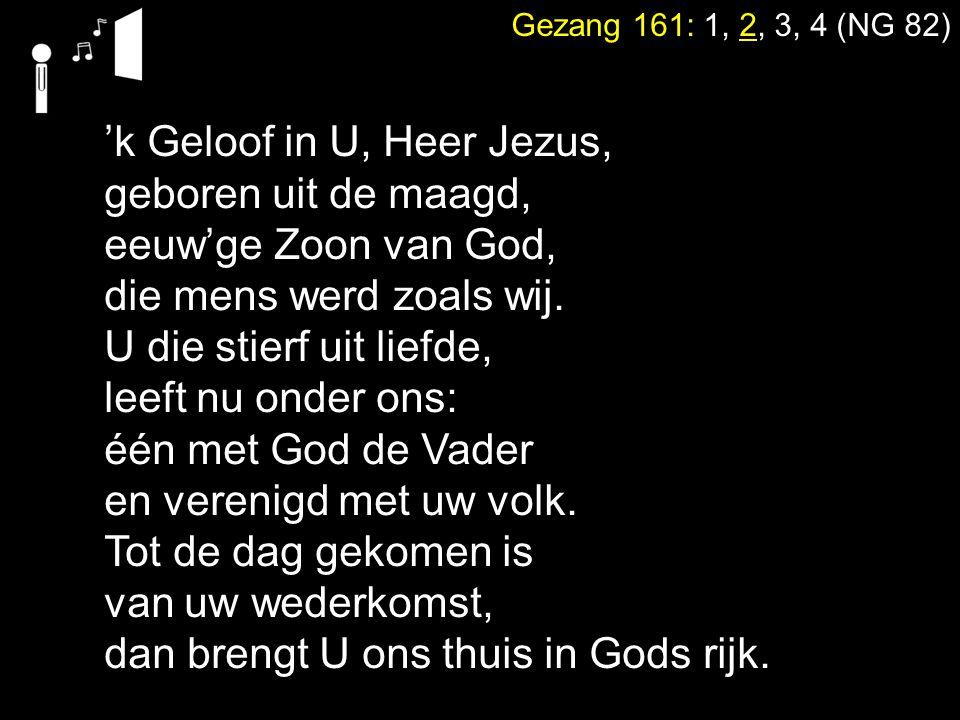 'k Geloof in U, Heer Jezus, geboren uit de maagd, eeuw'ge Zoon van God, die mens werd zoals wij. U die stierf uit liefde, leeft nu onder ons: één met