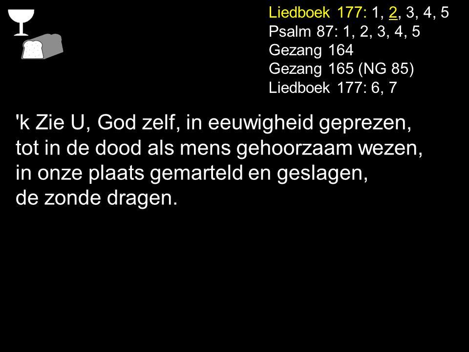 Liedboek 177: 1, 2, 3, 4, 5 Psalm 87: 1, 2, 3, 4, 5 Gezang 164 Gezang 165 (NG 85) Liedboek 177: 6, 7 'k Zie U, God zelf, in eeuwigheid geprezen, tot i
