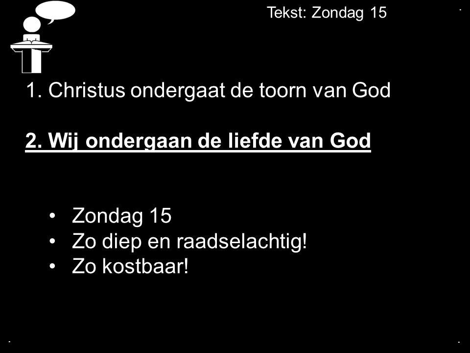 Tekst: Zondag 15... 1. Christus ondergaat de toorn van God 2. Wij ondergaan de liefde van God Zondag 15 Zo diep en raadselachtig! Zo kostbaar!