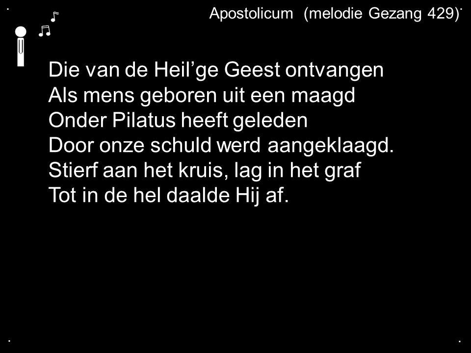 .... Apostolicum (melodie Gezang 429) Die van de Heil'ge Geest ontvangen Als mens geboren uit een maagd Onder Pilatus heeft geleden Door onze schuld w