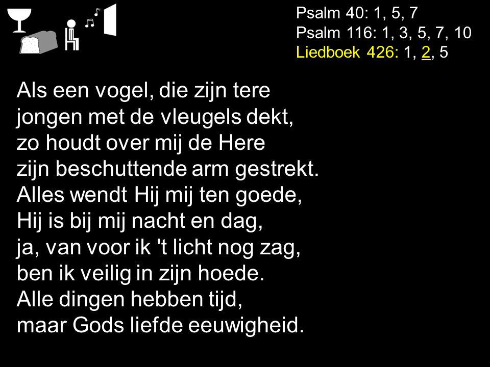 Psalm 40: 1, 5, 7 Psalm 116: 1, 3, 5, 7, 10 Liedboek 426: 1, 2, 5 Als een vogel, die zijn tere jongen met de vleugels dekt, zo houdt over mij de Here