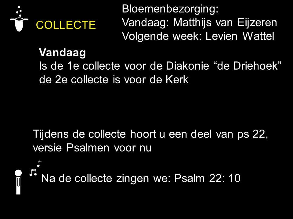 """COLLECTE Vandaag Is de 1e collecte voor de Diakonie """"de Driehoek"""" de 2e collecte is voor de Kerk Tijdens de collecte hoort u een deel van ps 22, versi"""
