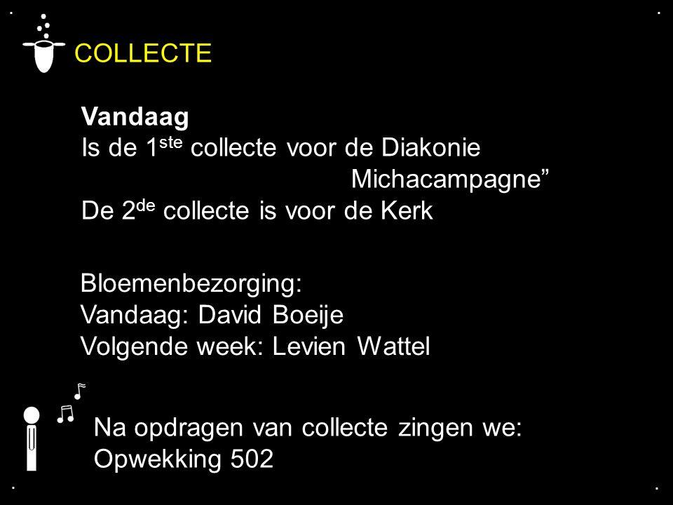 """.... COLLECTE Vandaag Is de 1 ste collecte voor de Diakonie Michacampagne"""" De 2 de collecte is voor de Kerk Bloemenbezorging: Vandaag: David Boeije Vo"""