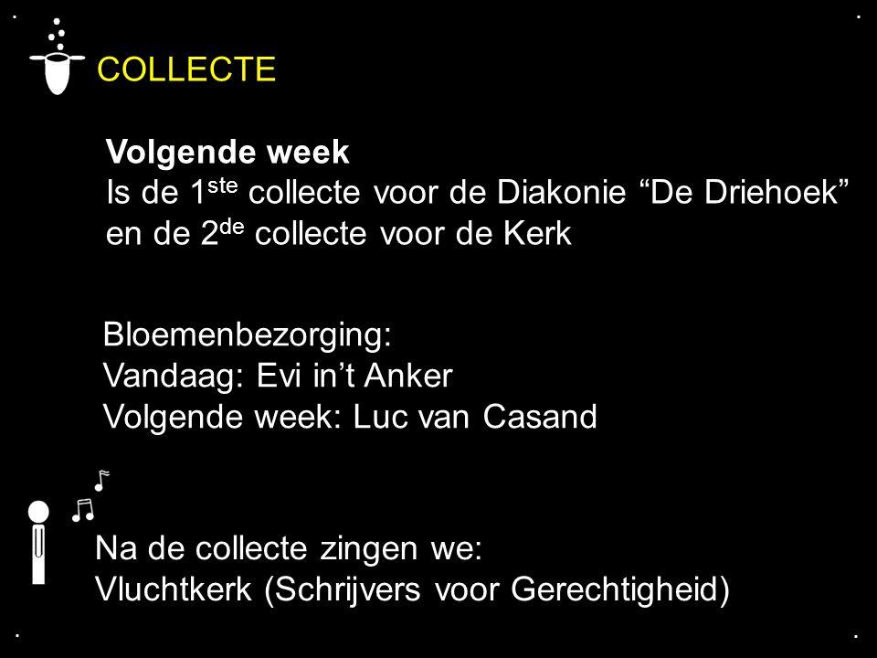 """.... COLLECTE Volgende week Is de 1 ste collecte voor de Diakonie """"De Driehoek"""" en de 2 de collecte voor de Kerk Na de collecte zingen we: Vluchtkerk"""